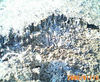 200601190918.jpg