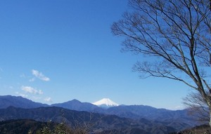 Fuji_1