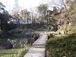 Yasukuni_sinike